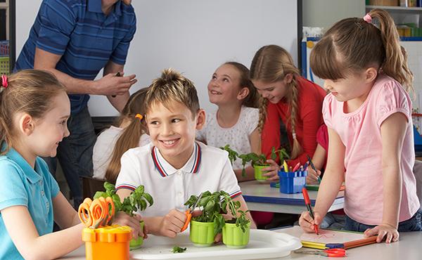 Metodología en las habilidades sociales en educación